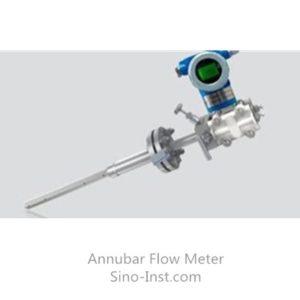 Annubar flow meter with DP transmitter